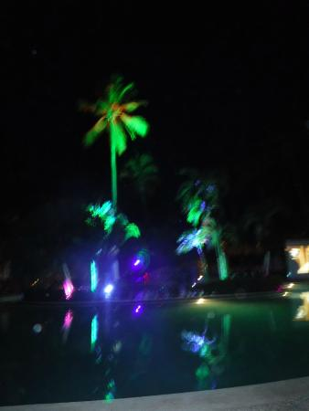 light up the palm trees picture of dreams palm beach punta cana