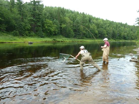 Country Haven Lodge & Cottages: Reeling it in