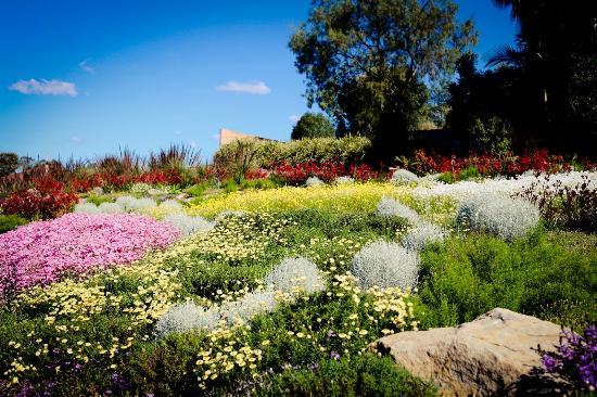 The Australian Botanic Garden