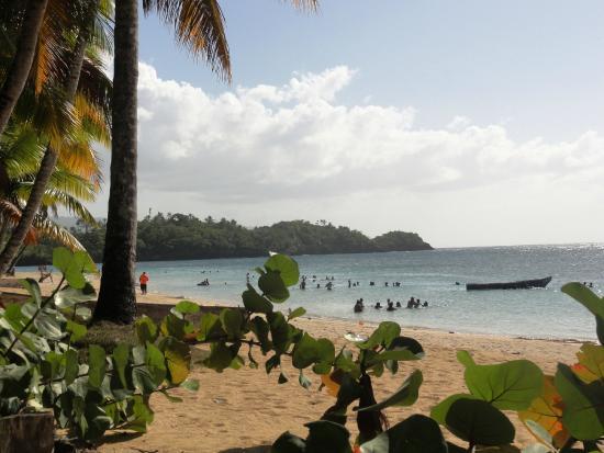 Grand Bahia Principe El Portillo: LAS TERRENAS.