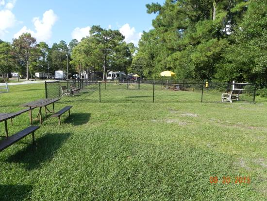 Wilmington KOA: Dog run area.  2 seperate area's divided by a fence