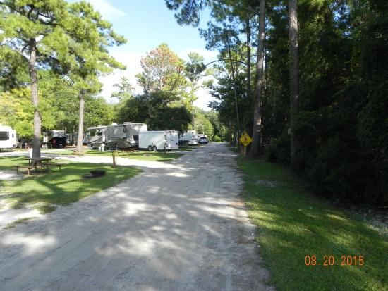 Wilmington KOA: A view of he campground walking up one of the roads