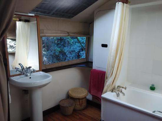 Sekenani Camp: Washroom and view outside