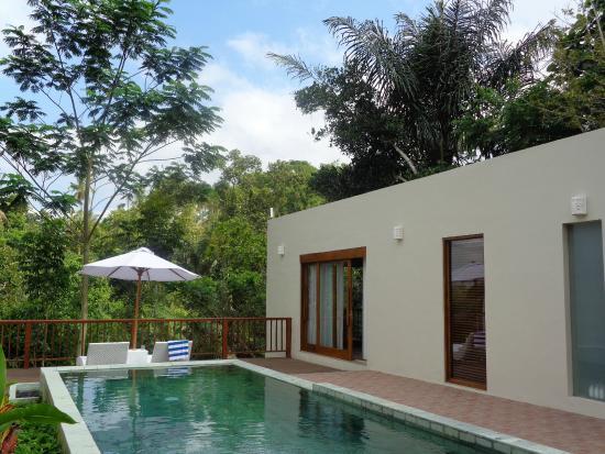 Private Pool Picture Of Senetan Villas Spa Resort Payangan Tripadvisor