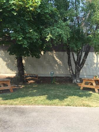 Kalispell Hilltop Inn: Shady picnic spot @ the Inn