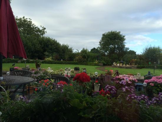 Innwood House: Il giardino sul retro