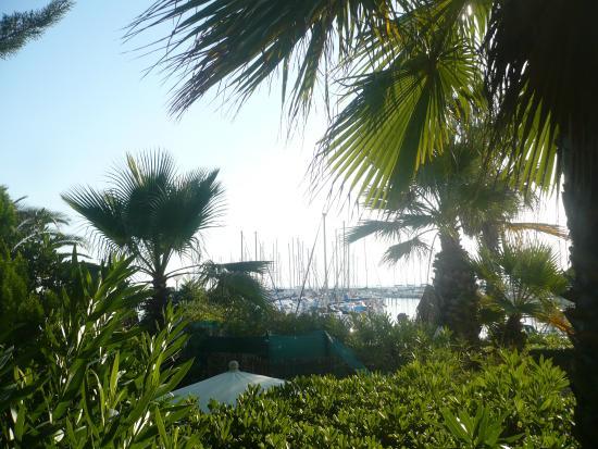 Hotel Azur: Vue partielle du port depuis une chambre côté jardin 1er étage