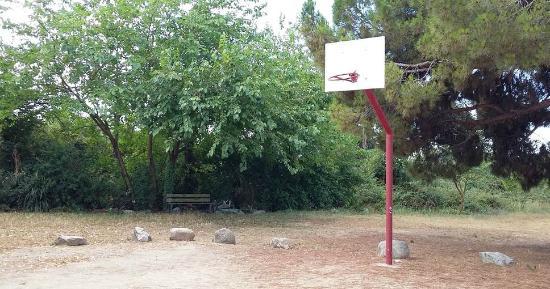 Can Edo: Canastas de baloncesto para disfrutar!