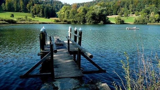 Bichelsee Balterswil, Schweiz: Der Steg mit Sprungbrett