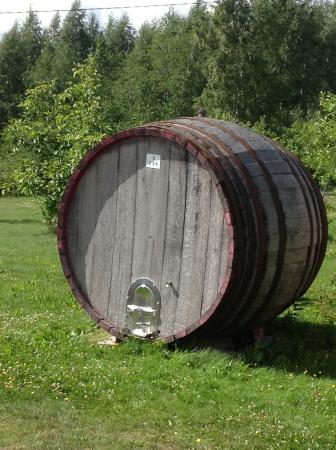 Ollinmaki Vineyard