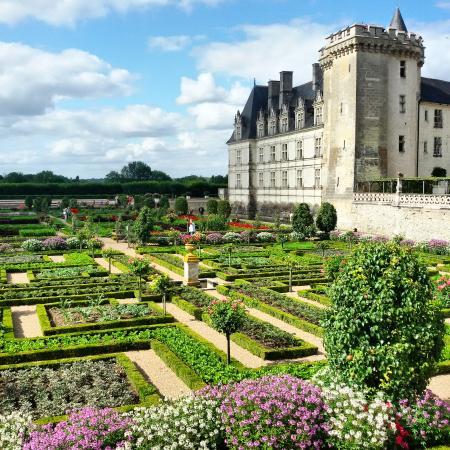 giardini di vilandry picture of chateau de villandry. Black Bedroom Furniture Sets. Home Design Ideas