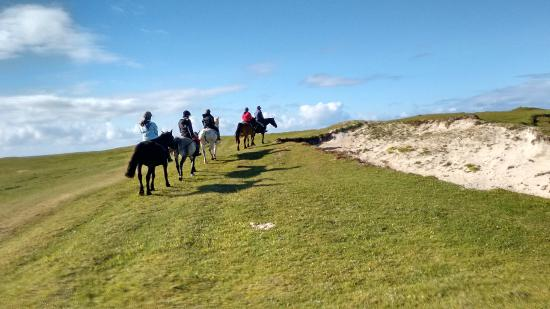 The Point Equestrian Centre and Pony Trekking