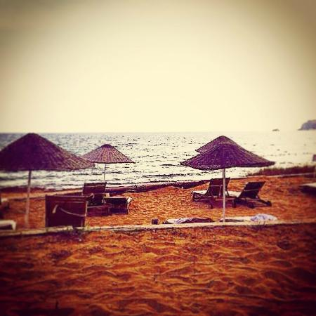 Latife's Boutique Hotel: Sulubahçenin manzarası
