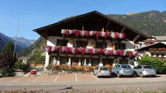 Gasthof Tannenhof