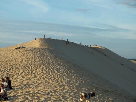 dune de pyla picture of camping la rive biscarrosse tripadvisor. Black Bedroom Furniture Sets. Home Design Ideas