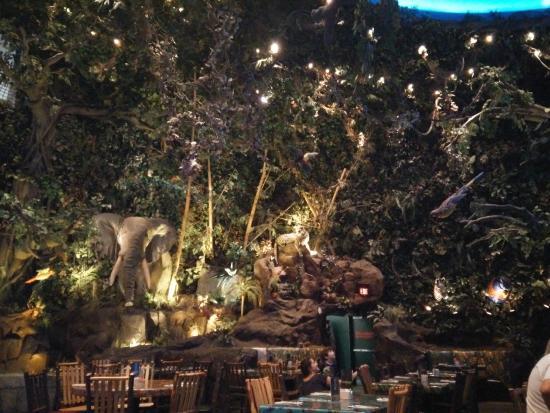 Rainforest Cafe Las Vegas Nv