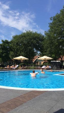 Parkhotel De Wiemsel : Zwembad