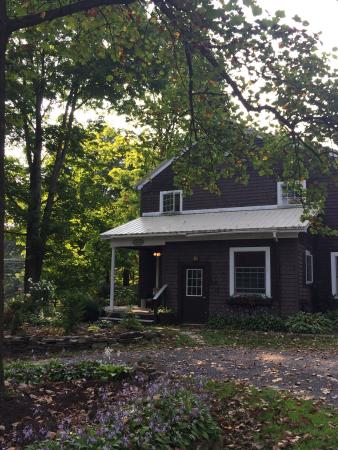 Mary's Meadow Bed and Breakfast: photo0.jpg
