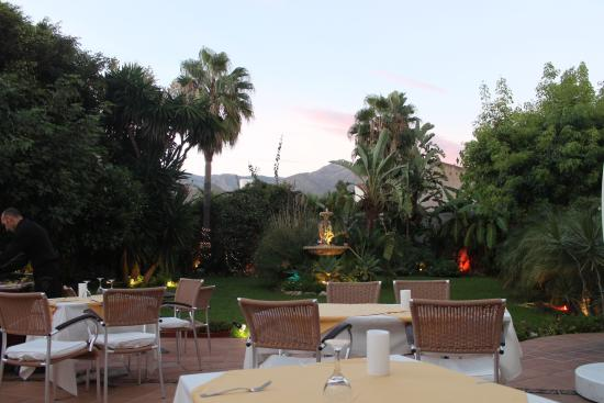 Mushroom risotto picture of casa jardin nerja tripadvisor for Casa jardin nerja