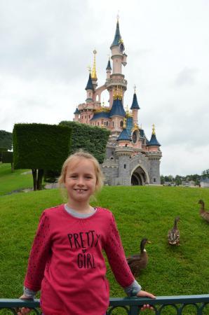 Disneyland Park: уточки!