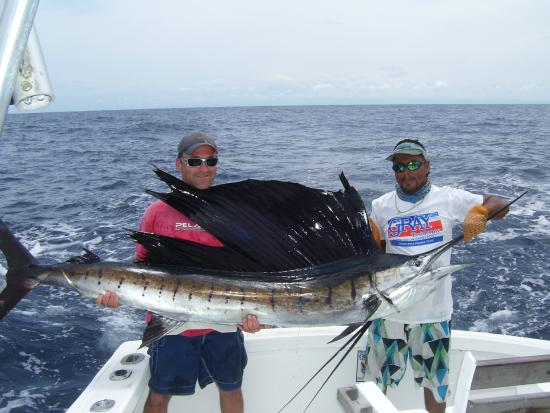 David said pacific sailfish are larger than atlantic for Quepos fish adventure
