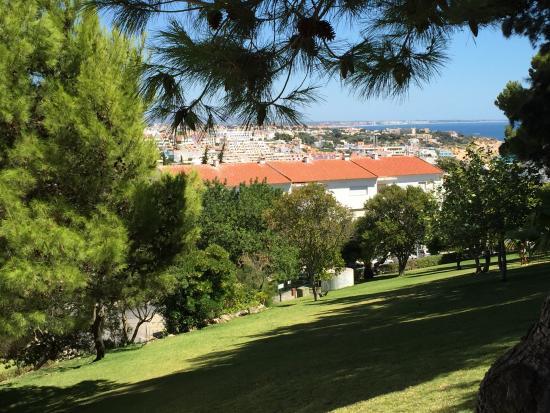 Albufeira jardim apartamentos turisticos picture of for Albufeira jardin