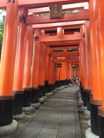Fushimi Inari: Portails