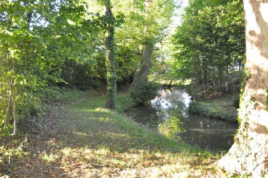 Chateau de Grunstein : 川が流れる庭