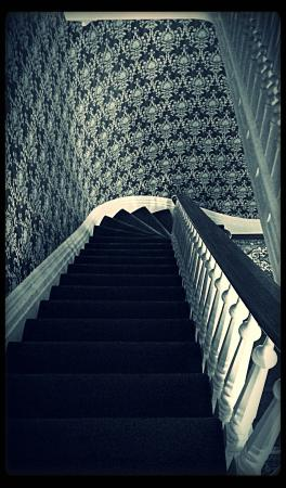 DeLano Mansion Inn Bed and Breakfast: I could NOT get enought of the staircase.