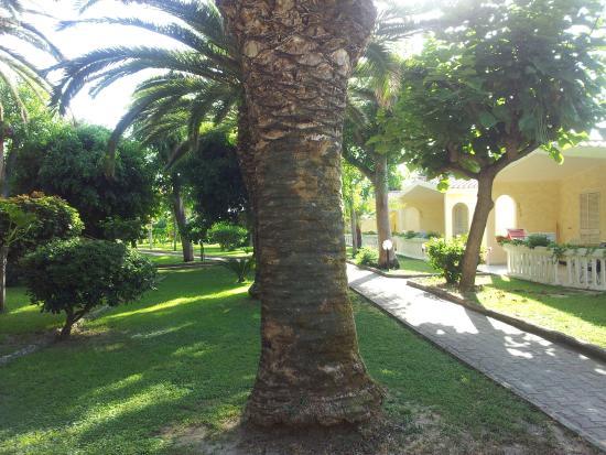 Hotel Villaggio Roller Club: Villaggio