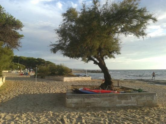 Camping La Vecchia Torre: camping beach