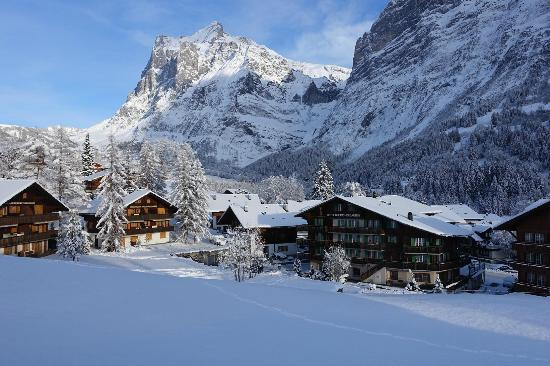 The Wetterhorn: Wetterhorn and Grindelwald in Winter