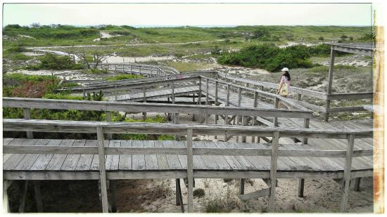 Sailors Haven: Boardwalk to the beach at the end of sunken forest