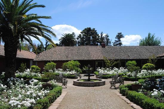 El Monte, Chile: Entry rose garden