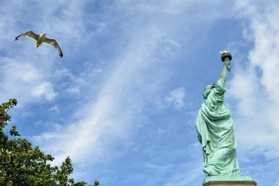 Statue of Liberty: Estatua con gaviota