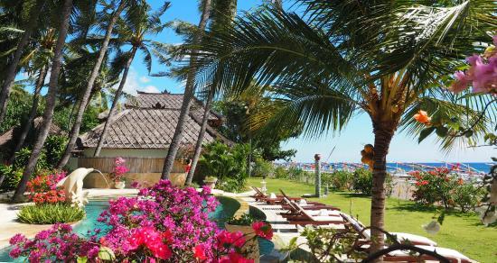 Palm Garden Amed Beach & Spa Resort照片