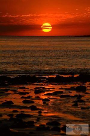 Bilde fra Playa Punta Colorada
