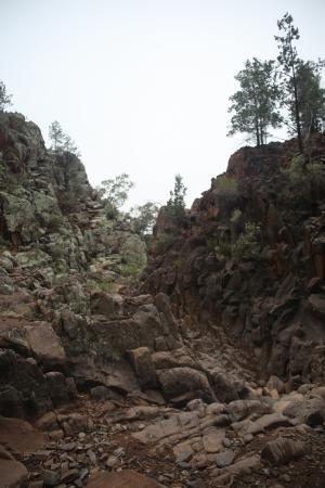 Flinders Ranges National Park: Sacred Gorge