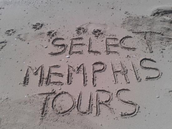 Porto South Beach: Memphis Tours, the taste of excellence