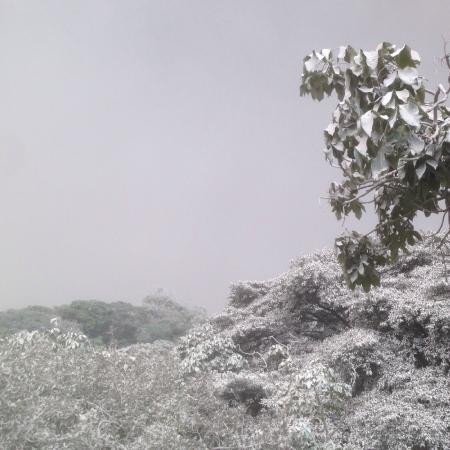 Volcan de Fuego: ceniza