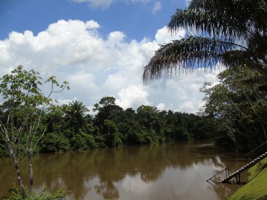 Kabalebo Nature Resort: The Kabalebo river