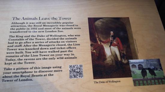 Tower of London: documenti di archivio