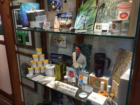 Hash Marihuana & Hemp Museum: photo2.jpg