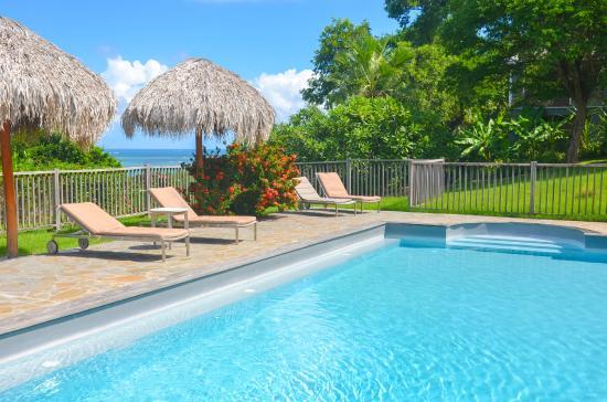 Hotel Plein Soleil: Vue de la piscine