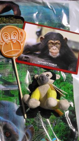 Monkey World: keepsakes and treats x x