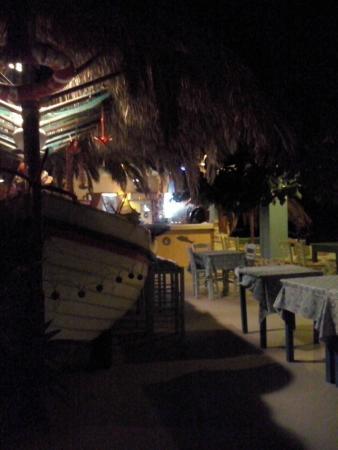 Aneplora: parte centrale con vasca-barca