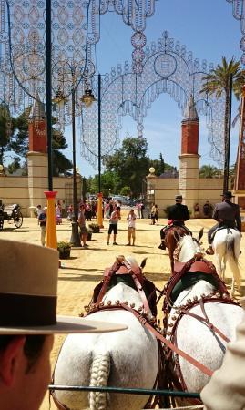 Feria del Caballo: En coche de caballos