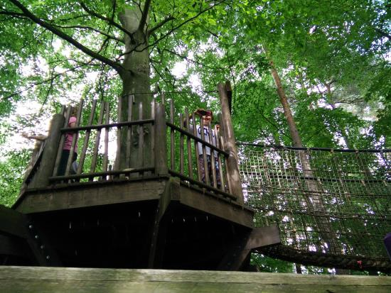 BeWILDerwood: At the top