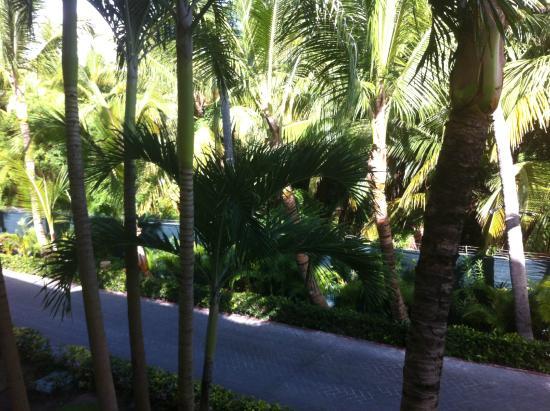 Luxury Bahia Principe Ambar Blue: Room 67210 view