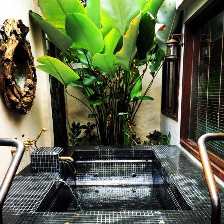 The Banjaran Hotsprings Retreat: photo3.jpg